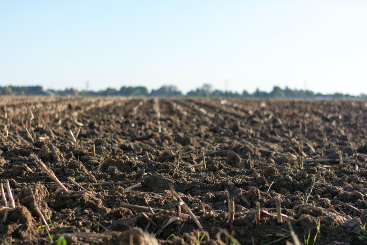 What farmers and investors need to know about soil productivity