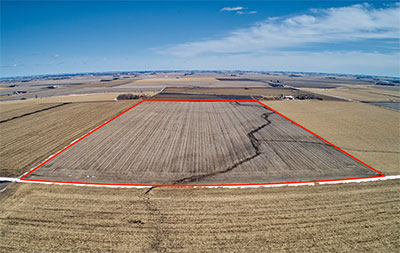 319.4 Acres, Clay County